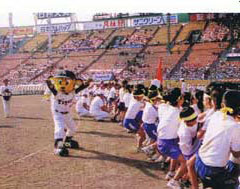 【2006年(50回大会)】