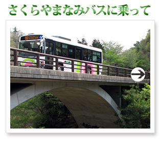 新緑の西宮 さくらやまなみバスに乗って