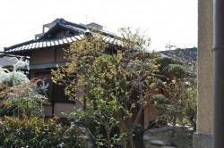 山本清記念財団
