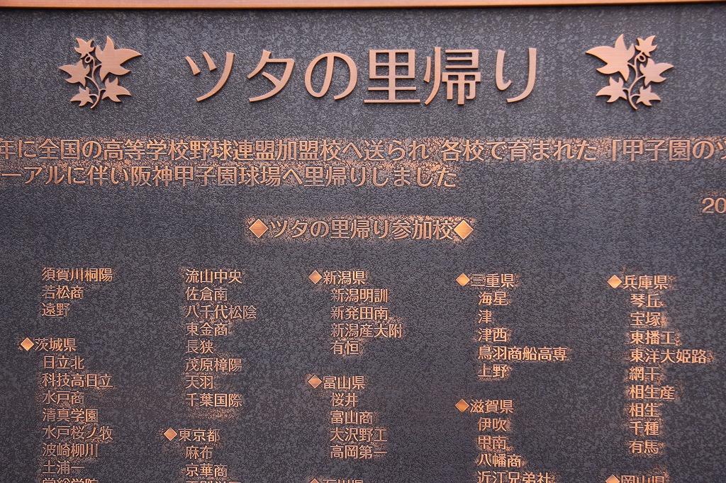 甲子園の「ツタの里帰り」記念パネル