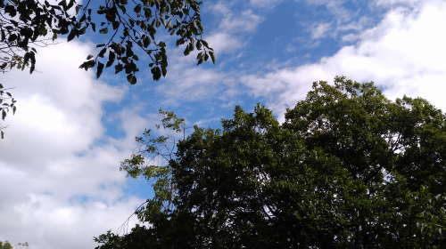 夙川公園、天高く青い空