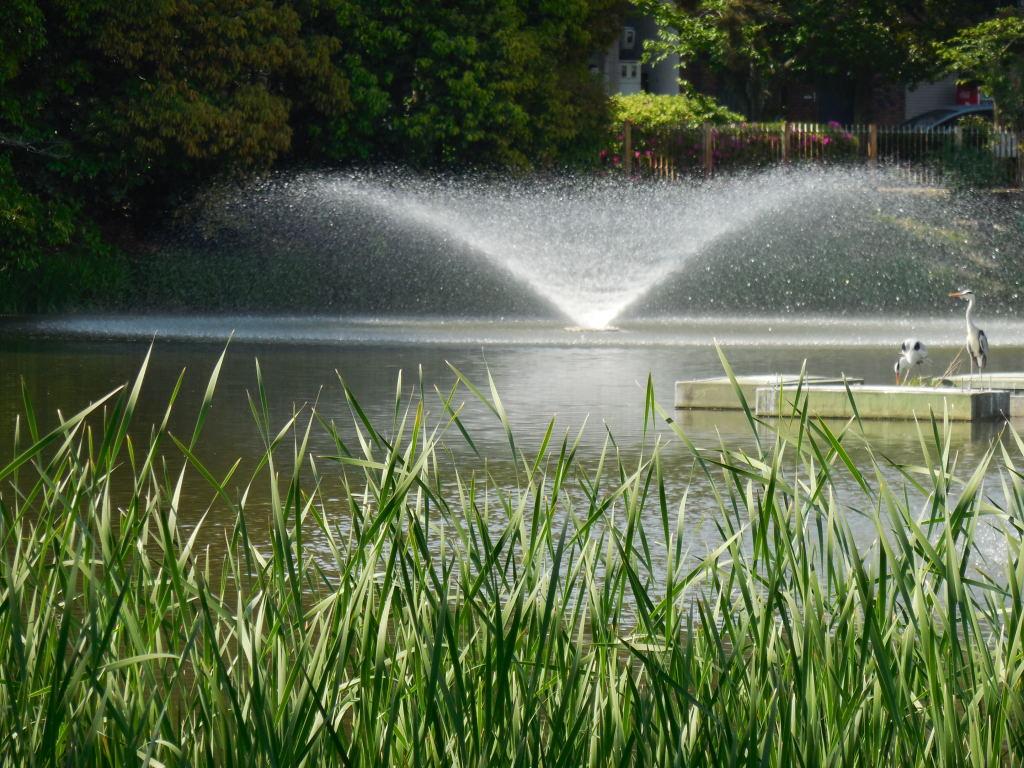 片鉾池噴水