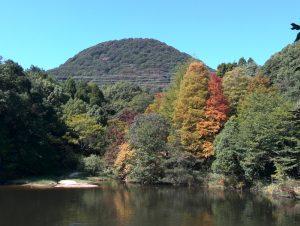 甲山の麓をめぐる森林浴コース