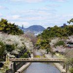 四季をめぐる夙川コース