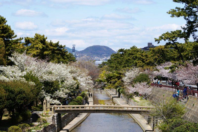 四季をめぐる夙川コースコースの見どころ主な案内ポイント