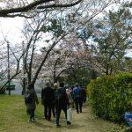 桜と阪神間モダニズム建築巡りを実施しました