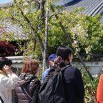 陽春の酒蔵ミニツアー(白鷹/白鹿)実施