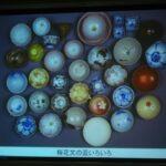 笹部新太郎翁とさくらコレクション