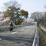 武庫川(小曽根町あたり)