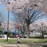 松ヶ丘公園
