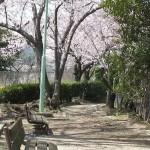 毘沙門公園