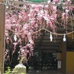 越木岩神社