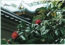 写真提供:越木岩神社