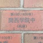 DSCN4624