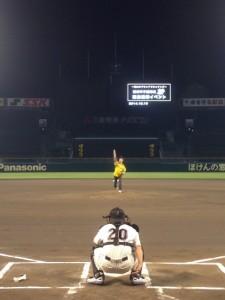 甲子園球場ナイター投球イメージ写真 (1)