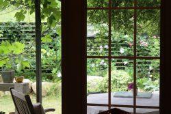 ガーデンカフェレストラン癒しの森のアリス