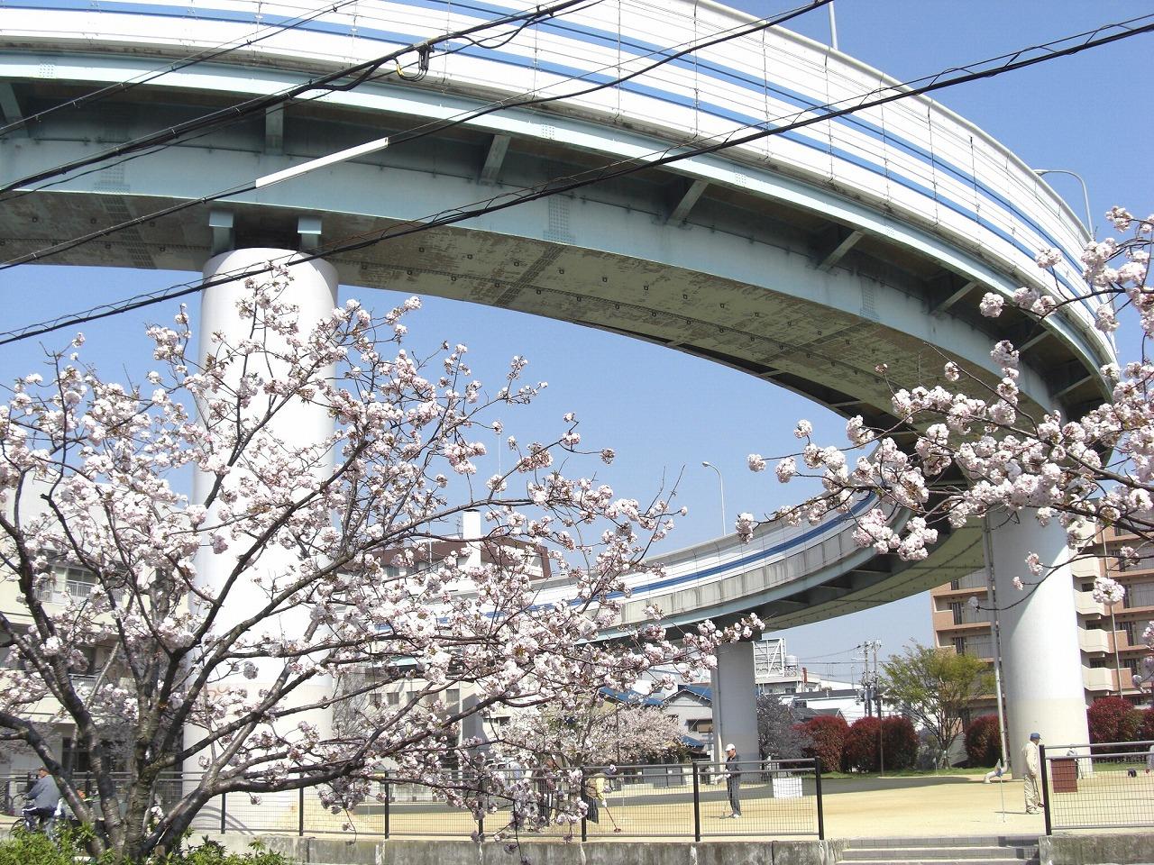 桜 阪神高速武庫川ランプ