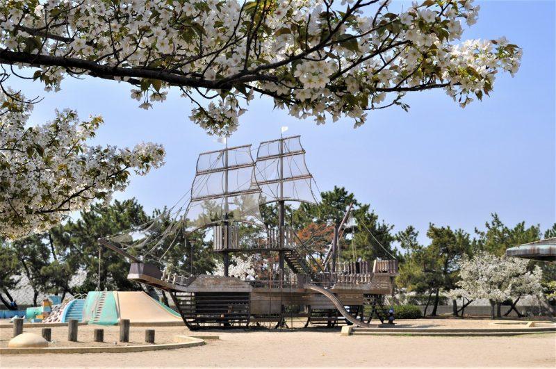 桜 浜甲子園運動公園