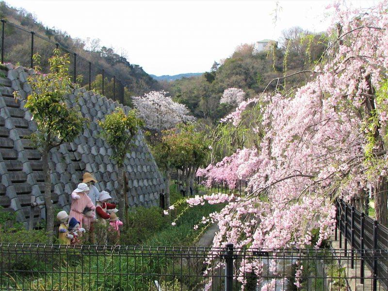 桜 地滑り公園