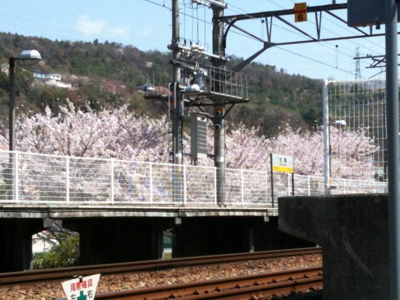 桜 生瀬駅