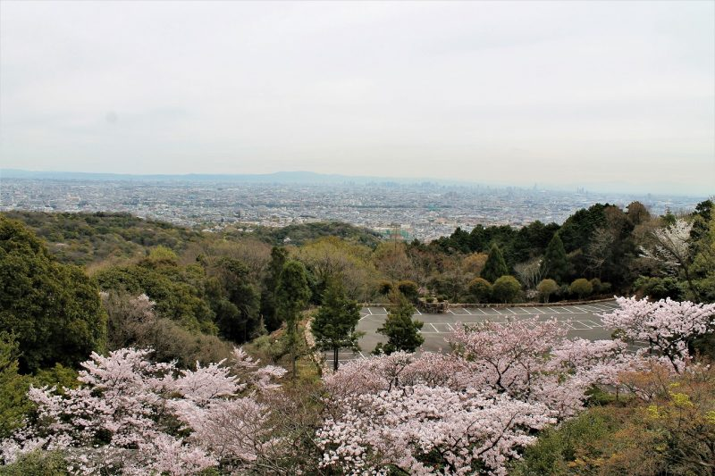 桜 神呪寺