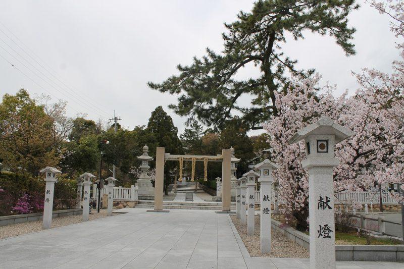 桜 廣田神社