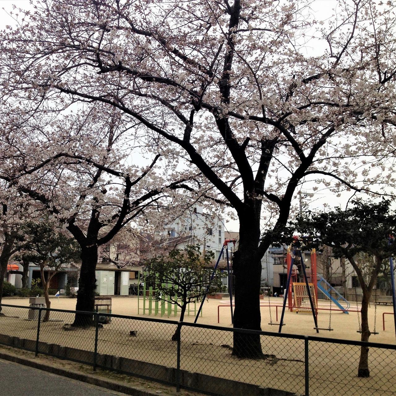 甲四公園I