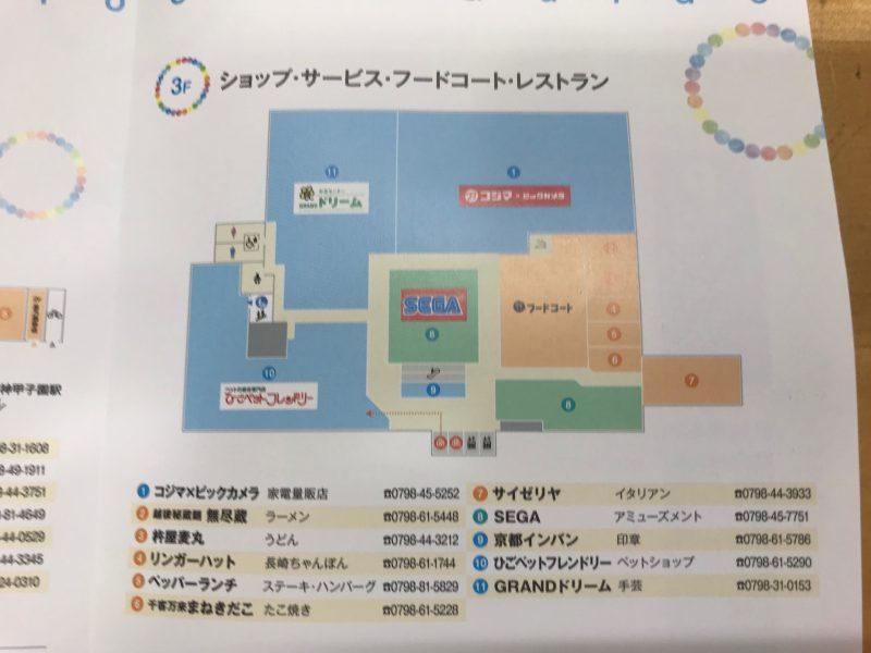 Coeowa甲子園