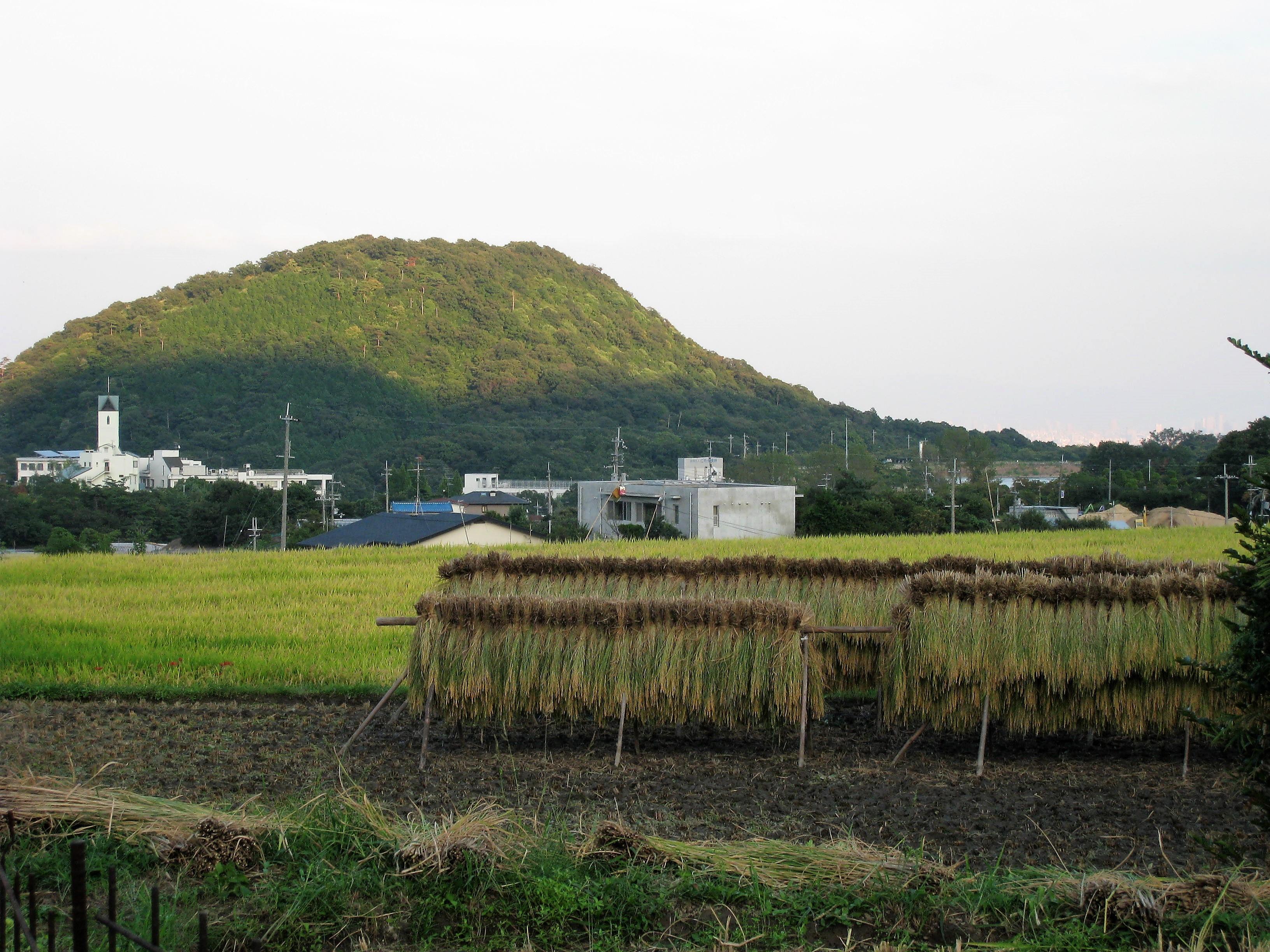甲山 鷲林寺