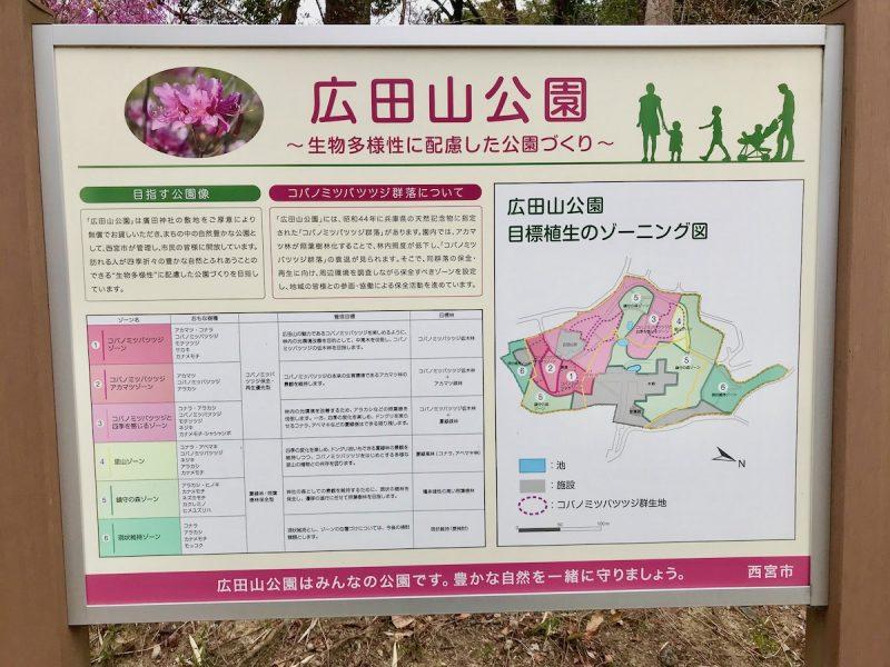 つつじ 廣田神社