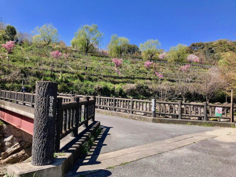 仁川 地滑り公園