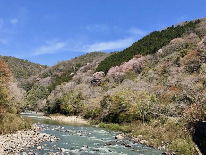 旧福知山線廃線跡
