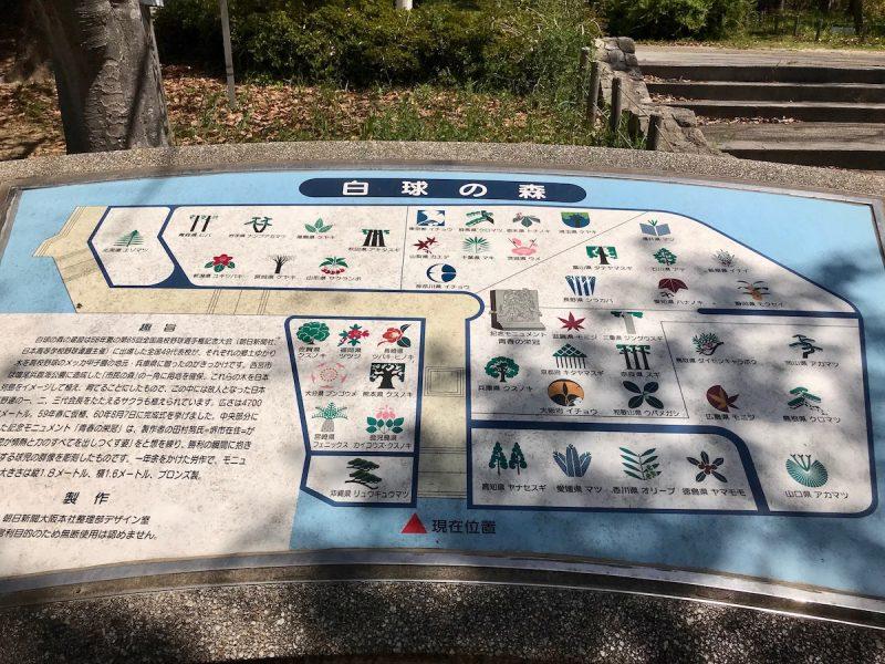 鳴尾浜臨海公園北地区 市民の森