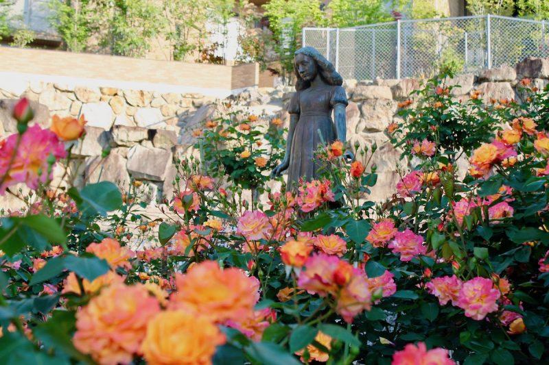 アンネのバラ「花の名所づくり」