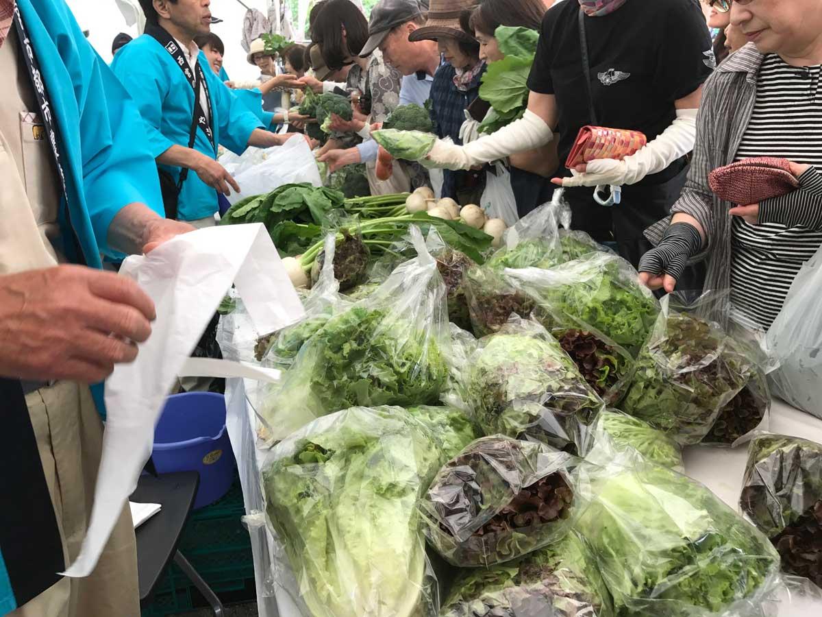 フラワーフェスティバル野菜即売会