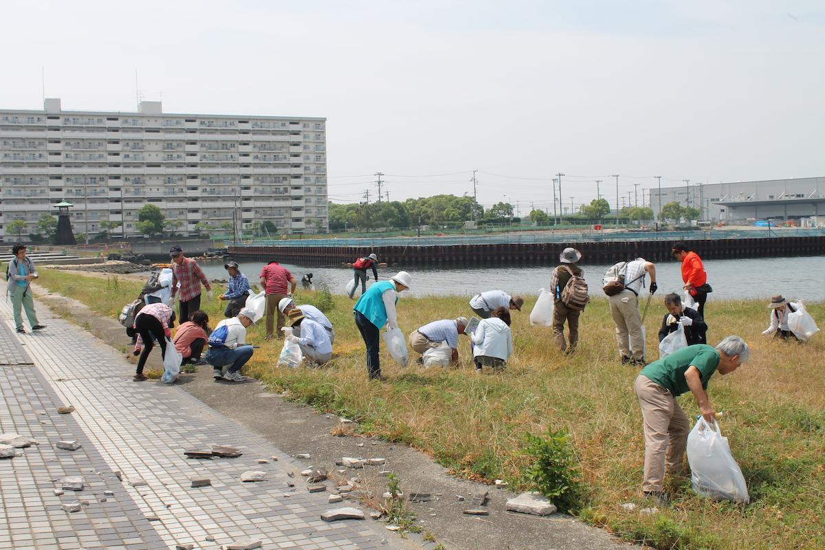 今津浜 清掃