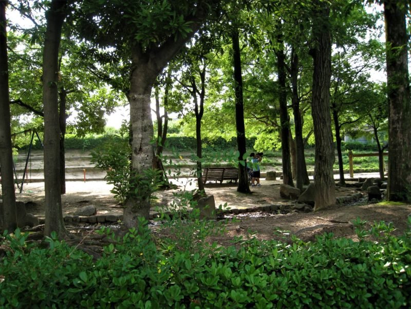 0623 樋之池公園